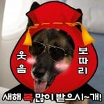 Mr. Zoo: The Missing VIP (미스터 주: 사라진 VIP)'s picture