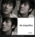 Ha Jeong-woo (하정우)'s picture